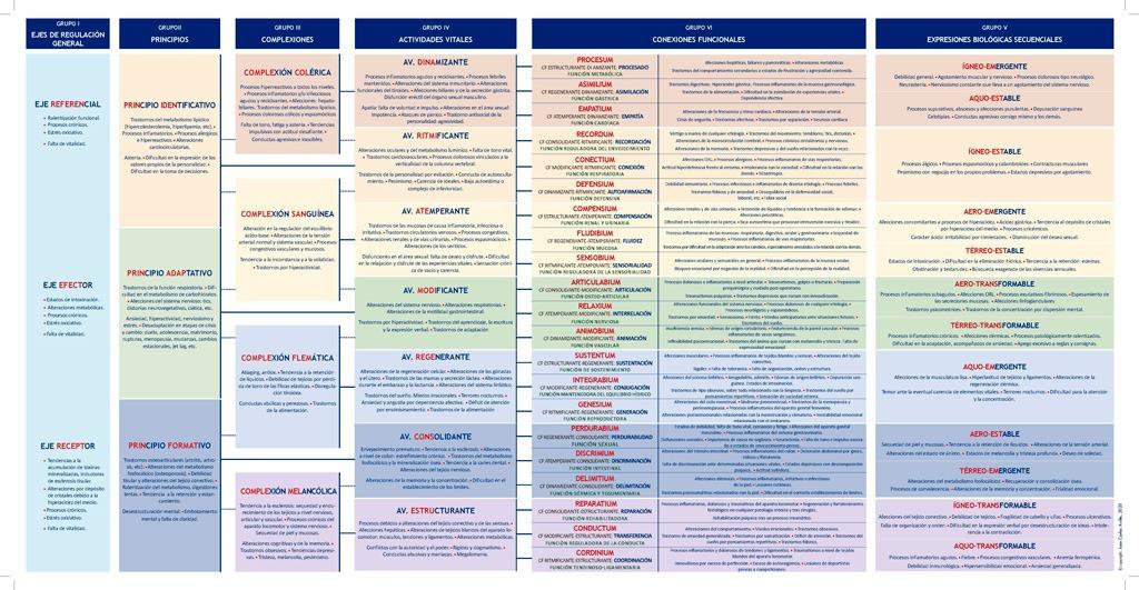 tabla-organizativa-cuadros-reaccionales-debilitamiento-reactivo